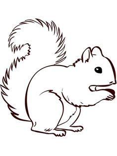 Squirrel Coloring Pages Simple. Squirrel is a rodent mammal. Squirrels have a small body shape of around 15 cm and have a long, curved tail that is 18 cm long. Animal squirrels are o. Preschool Coloring Pages, Easy Coloring Pages, Animal Coloring Pages, Coloring Pages To Print, Printable Coloring Pages, Coloring Pages For Kids, Squirrel Tattoo, Squirrel Art, Cute Squirrel
