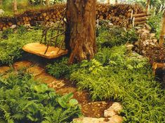 garden design with learn about the woodland garden hampton court best in show