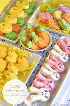 Easter Macarons - Easter Bunny Macaron, Easter Egg Macaron and more. Macaron Recipe, tutorial and template to make adorable easter macarons! Easter Cookies, Easter Treats, Easter Cake, Holiday Treats, Holiday Recipes, Holiday Decor, Easter Appetizers, French Macaroons, Macaroon Recipes
