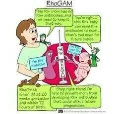 Rhogam
