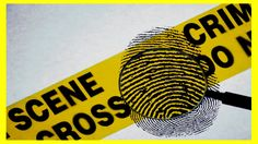 What does forensic science deal with? ★ Witty Smithey