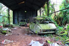 Abandoned Cars, Abandoned Places, Citroen Car, Rust In Peace, Barn Finds, Cars And Motorcycles, Decay, Vintage Cars, Creative Ideas