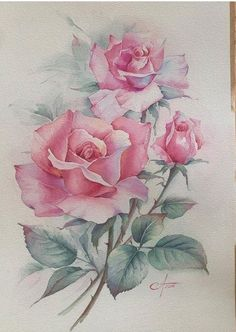 Watercolor Rose, Watercolor Artwork, Watercolor Artists, Watercolor Cards, Fabric Painting, Painting & Drawing, Rose Art, Flower Art, Drawings
