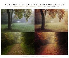 The best free photoshop actions for photographers - Autumn Vintage Photoshop Actions