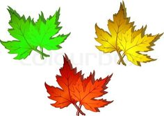 No 3 leaves are alike