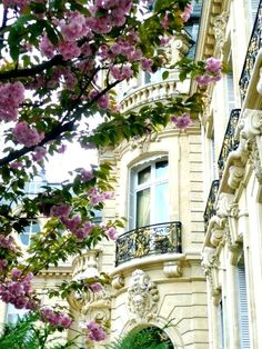 French Chic Parisian architecture