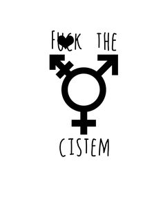 F*ck the Cistem, F*ck the System, Non Binary Decals, Gender Fluid Decal, Genderfluid Symbol, Vinyl Decal by CrassandSass on Etsy https://www.etsy.com/ca/listing/261884909/fck-the-cistem-fck-the-system-non-binary