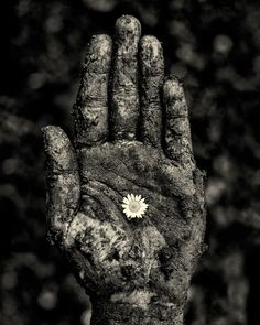 """Hope"" black and white photography by Sarah Treanor \ Self Portrait \ hand \ flower \ grief \ fine art photography \ wall art \ Etsy \ for sale"