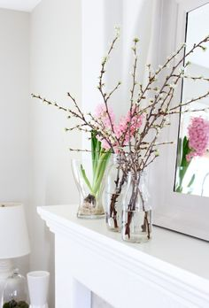 Add an easy and inexpensive touch of spring to your space by forcing branches to bloom indoors.