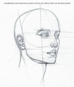 Study by StefanoLanza – Drawing Techniques Realistic Drawings, Cool Drawings, Pencil Drawings, Pencil Drawing Tutorials, Art Tutorials, Profile Drawing, Face Profile, Drawing Heads, Drawing Faces