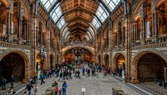 London - Natural History Museum by pingallery on DeviantArt
