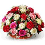 We are suppliers of Pune Florists, Red Roses to Pune, Birthday Gifts to Pune, Anniversary Flowers to Pune, Wedding Gifts to Pune, Gift to Pune, Send Gift to Pune, Pune Florist, Pune Florists, Sending Flowers to Pune, Sending Gifts to Pune, Cakes to Pune, Gift Vouchers to Pune, Food Coupon to Pune, Pantaloon Vouchers, Shopper's Stop Vouchers to Pune, Fresh Baked Cakes to Pune, For more information about Feelings Florist, click on http://www.flowers4feelings.com/gifts_to_pune