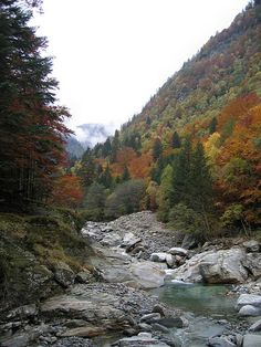 FAERY of TALES - jewelry made to last generations - Alpe Ripiano (Bellinzona) Canton Ticino, Clean Beach, Autumn Scenery, Perfect Timing, Cool Countries, Hiking Trails, Alps, Faeries, Switzerland