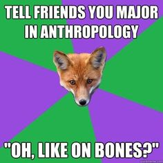 Anthropology top majors