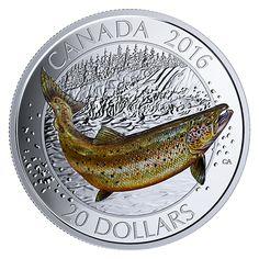 Fine Silver Coloured Coin – Canadian Salmonids: Atlantic Salmon – Mintage: 5,500 (2016)
