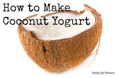 Adventures in Fermentation: Coconut Milk Yogurt - Gutsy By Nature