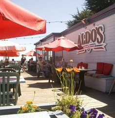 Diners Drive-ins and Dives - Aldo's gotta try it