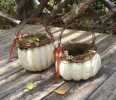 flower girl baskets - how neat!
