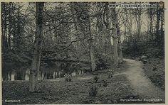 Burgemeester Rijkenspark/Bosbeek- Santpoort
