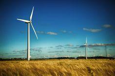 windpark_2
