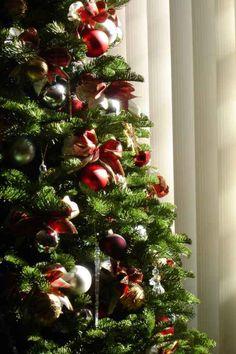 Como elegir entre un árbol de #Navidad artificial y uno natural. #consejos #Christmas
