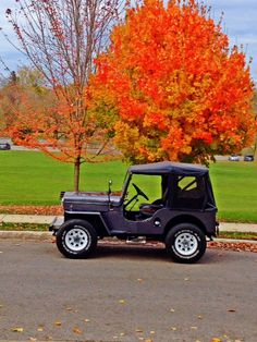 1953 Willys CJ-3B - Photo submitted by Drew Burrell.