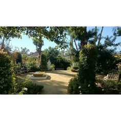 Jardín en Guadalmina. #jpdesigner #garden_design #Gardens #gardening #style #luxury #architecturelovers #archilovers #paisajismo #Paisajista #jardin #gardenarchitecture #gardenarchitect #peace #spain #marbella #home #design #collectionworld