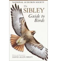 The Sibley Guide to Birds (Audubon Society Nature Guides) By (author) David Sibley
