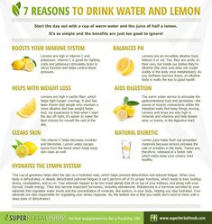 7 Reasons to Drink Water and Lemon