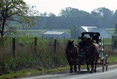 Ohio Amish Country - Christine B. © 2011