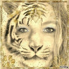 Le Tigre (Fotomontage, YO)