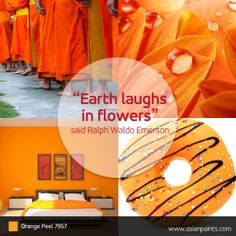 The world's a flower this spring! via @ Asian Paints @ http://www.pinterest.com/asianpaints/
