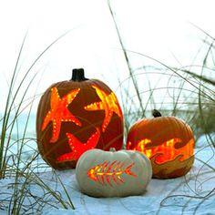 Carve a Coastal Pumpkin!