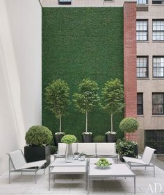 I would like to do something like this on the second floor terrace where we will install french doors. Missionary wall covered in faux boxwood
