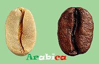 Arabica ve Robusta Nedir?