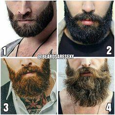 beard sizes