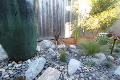 artistic landscape strip garden design - Google Search