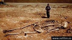 Tierra De Gigantes: Evidencia De Gigantes En La AntigüEdad Parte I