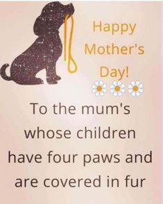 Happy Mother's day to the moms whose children have four paws. Online Pet Supplies, Dog Supplies, Dog Treat Toys, Dog Poems, Mothering Sunday, Dog Boutique, Happy Mother S Day, Daily Pictures, Animal Quotes