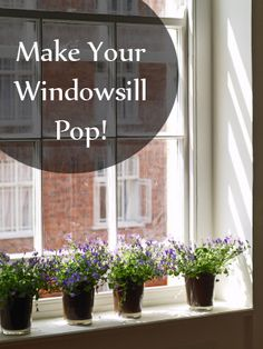Make your windowsill pop!