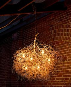 Tumbleweed chandelier, not sure how it would look in person but it's a cool idea.