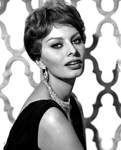 A beautiful publicity portrait photograph of the Italian film actress, Sophia Loren. 1959. Photographer unknown.