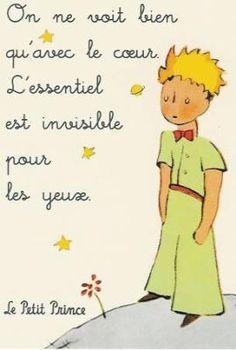 Le Petit Prince ,un petit bijou,à lire et à relire à tout âge .