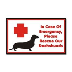 Yes please! ♡ I love my two Dachshunds... they are my wonderful babies ;) ♡