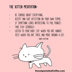 Discover and share Meditation Quotes On Stress. Explore our collection of motivational and famous quotes by authors you know and love. Meditation Quotes, Daily Meditation, Crazy Cat Lady, Crazy Cats, Daddy Kitten, Little Buddha, Kittens Playing, Little Kittens, Little My