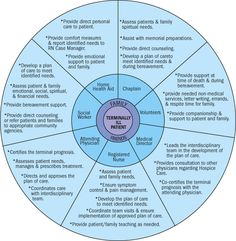 """Hospice Circle of Care"" graphic explains simply how our team provides your family with whole-family care."
