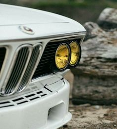 A true survivor will always be the last one standing. The CSi. Bmw E9, Bmw Classic Cars, E30, Bmw Cars, Automotive Design, S Pic, Courses, Cool Cars, Dream Cars