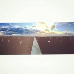"""""""Teresa ha gli occhi secchi  guarda verso il mare  per lei figlia di pirati  penso che sia normale.  Teresa parla poco  ha labbra screpolate  mi indica un amore perso  a Rimini d'estate."""" #rimini #alba #sunrise #sea #beach #spiaggia #sand #adriatico #mare #cielo #colors #sky #skyporn #clouds #cloudy #horizon #goodmorning #igersromagna #igersitalia #italy #riviera #deandre' #fabriziodeandre' #spiaggia #mattinate #morningglory #morningview #myviewrightnow #brightsun #earlymorning #morningsun…"""