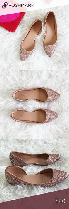 Blush Sparkle Pointy Flats Blushy pink sparkling pointy glitter flats. These babies really shimmer! Worn 2-3 times, in excellent condition. Coming soon! American Eagle Outfitters Shoes Flats & Loafers