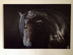 Jasper in progress Tony O'Connor Equine Art whitetreestudio.ie